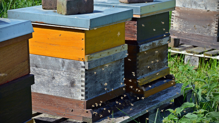 Rozširovanie úľov nadstavcami