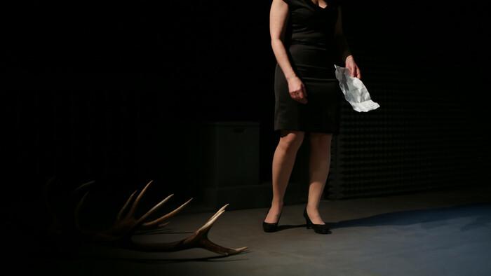 Prešovské národné divadlo uvádza Dospelosť Michaely Zakuťanskej
