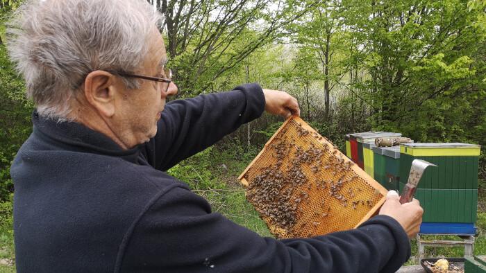 Chovateľ včelích matiek