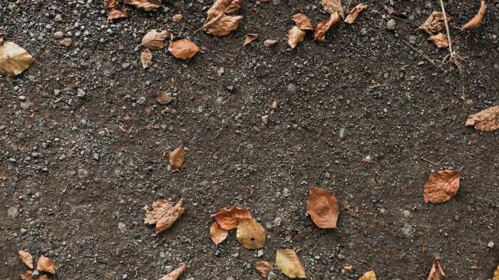 Pôda – náš poklad