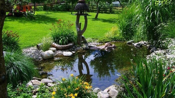 Zo zeme (s Barbarou) / Čistíme záhradné jazierko