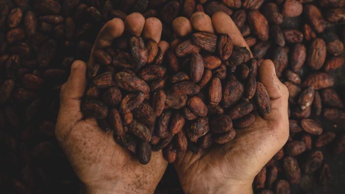 Kakaový nápoj Mayov