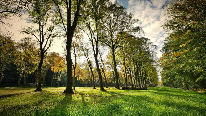 V Bystričanoch budú mať nový park