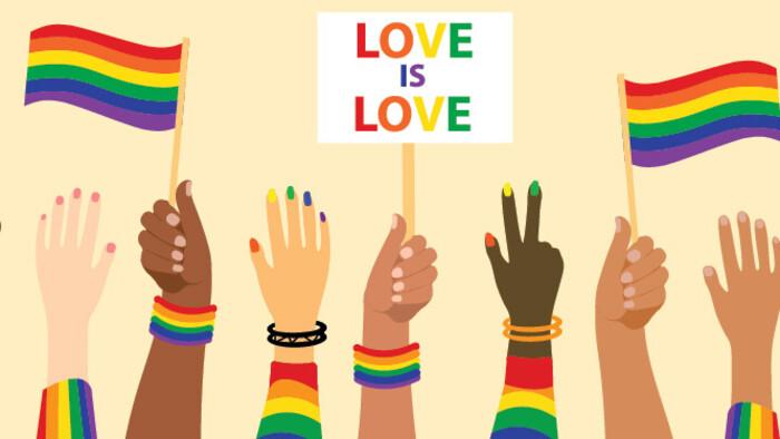 Az LMBTQ közösséghez tartozók helyzete Szlovákiában