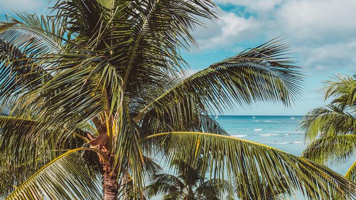 Ako si vybrať letnú dovolenku?   Na jednej vlne