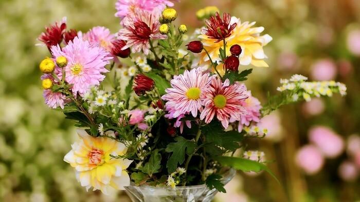 Zo zeme (s Barbarou) / Kvety na rez do vázy