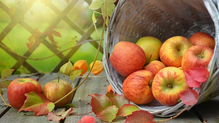 Zo zeme (s Barbarou) / Uskladňujeme ovocie na zimu