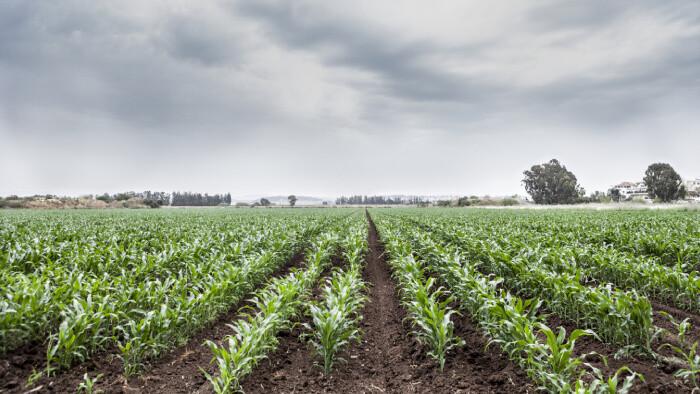 Problémy s trhom pôdy by mal odstrániť pôdny register