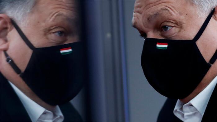 Slovenské reakcie na maďarské rozhodnutie