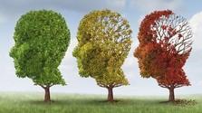 Workshop pre rodinných príslušníkov chorých na Alzheimera