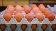 Kvalita vajec