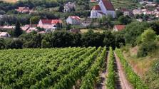Museo de la viti y vinicultura en Svätý Jur