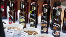 Visitamos una fábrica de cerveza en Rožňava