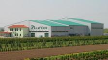 Cooperativa agraria Plantex de Veselé protege su producción con caňones