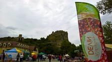 RÍBEZĽOVÝ DEVÍN – Ein Fest rund um den Johannisbeerwein (Theben, Tourismus), 21.07.2016