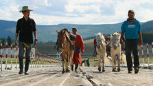Mongolsko – na koňoch za kočovným kmeňom Tsaatanov