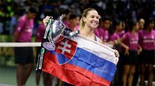 Cibulková earns greatest success of her career