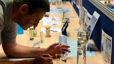 El lunes comenzó la Semana de la Ciencia y la Tecnología en Eslovaquia