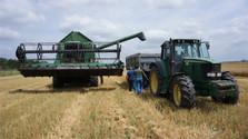 Wie kann sich der Brexit auf die slowakische Landwirtschaft auswirken?