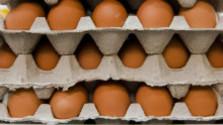 Čo vás trápi? Prečo treba kupovať slovenské vajcia