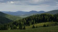 Zusätzliche Aufforstung in der Slowakei geplant
