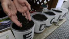 Klub spotrebiteľov: Kompostovanie v domoch a bytoch