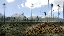 Apocalypse dans les Tatras : 15 ans déjà
