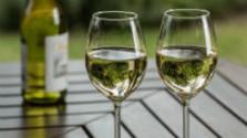 Klub Farmárov: Slovenské vína si odborníci cenia