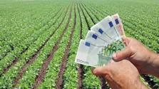 Miért jár kevesebb a mi gazdáinknak, mint a nyugat-európaiaknak?