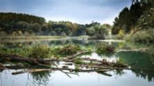 Vodohospodári a ich štúdium