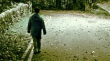 Prechádzky