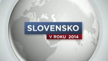 Slovensko v roku 2014