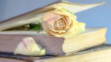Literárium - Mary Dwyn Sumbalová