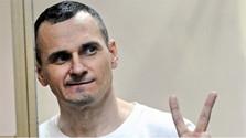 Slovak filmmakers in support of Oleg Sentsov
