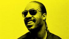 Miniprofil: Stevie Wonder