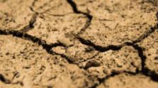 Poľnohospodárov trápi sucho