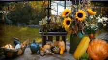 Jesenné kvetinové inšpirácie