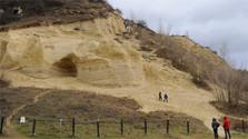 Insektenparadies, Labyrinth und Versteinerungen auf dem Sandberg