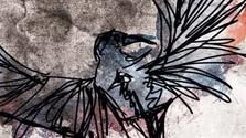 Knižná recenzia: Pomaľované vtáča