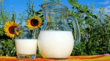 Konzumácia mlieka na Slovensku