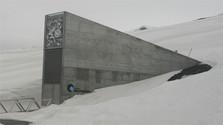 Slowakei schickt Proben zum Saatgut-Tresor auf Svalbard