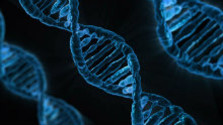 Test DNA zo slín odhalí aj náchylnosť na choroby