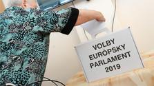 Profil des électeurs slovaques aux élections européennes