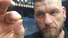 Regierung fördert Entwicklung des slowakischen Mikrochips