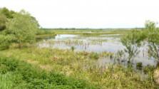 Nová rozhľadňa v prírodnej rezervácii Žitavský luh