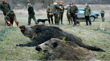 State orders banned methods of hunting