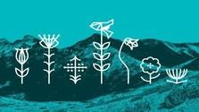 Tatra Flowers v posledný augustový deň