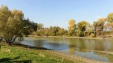 Prázdniny bez rodičov: Leto v Dobrohošti pri Dunaji