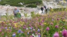 Recensement régulier des touristes dans les Tatras