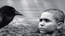 Pomaľované vtáča má premiéru v Benátkach